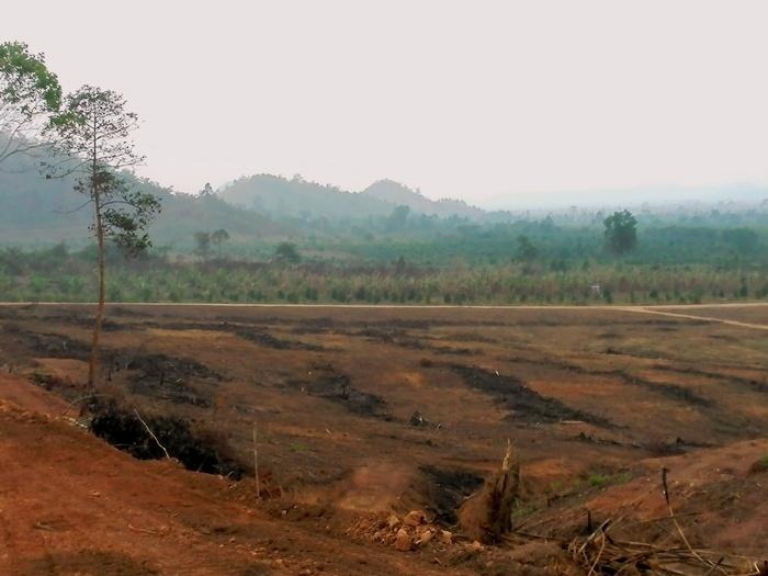 カンボジア不動産投資で200名以上が被害。詐欺に …